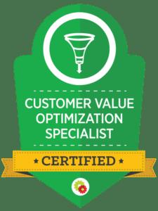 customer-value-optimization-specialist